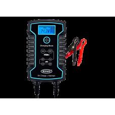 Зарядний пристрій з функцією інтелектуальної зарядки 6/12В, 6А для акумуляторів Ring (RESC806)